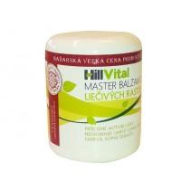 Master balzam - proti bolesti kĺbov, svalov a chrbta 250 ml